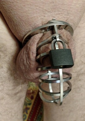 new cock cage 1